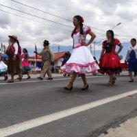 En Colchane realizaron desfile cívico militar por las fiestas Patrias