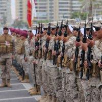 Con un gran marco de público se celebró la  Parada militar 2019.