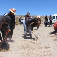 Buscan legar conocimientos ancestrales en siembra de Quinua a jóvenes Aymaras