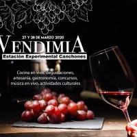 Lanzamiento Fiesta de la Vendimia 2020.