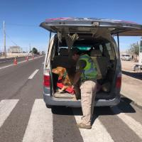 Carabineros del O.S.7 logró detener a extranjeros por tráfico de drogas en la comuna de Huara.