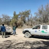 CONAF refuerza fiscalización de normativa forestal y sanitaria en La Tirana
