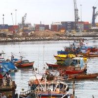 Pescadores tienen hasta el 17 de agosto para postular proyectos a fondo regional por $600 millones