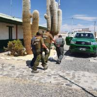 Carabineros y personal de Ejército detienen a 8 Bolivianos por ingreso ilegal a país.