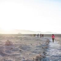 Reserva Nacional Pampa del Tamarugal cierra fines de semana y festivos por Paso 2