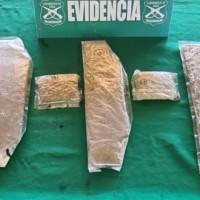 Colombiana que caminaba por la ruta Colchane 15 CH fue detenida por contrabando de Marihuana