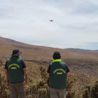 Monitorean bosque de queñoa con tecnología satelital