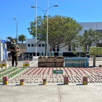 Carabineros detuvo a un hombre por infracción a ley de armas y explosivos en Alto Hospicio