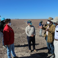 Seremi de Bienes Nacionales de Tarapacá compromete medidas de protección para las líneas de Ariquilda