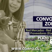 Corfo abrió convocatoria zonal con foco agroalimentario