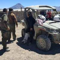 Carabineros rescató a migrante venezolana en el sector del bofedal de Colchane